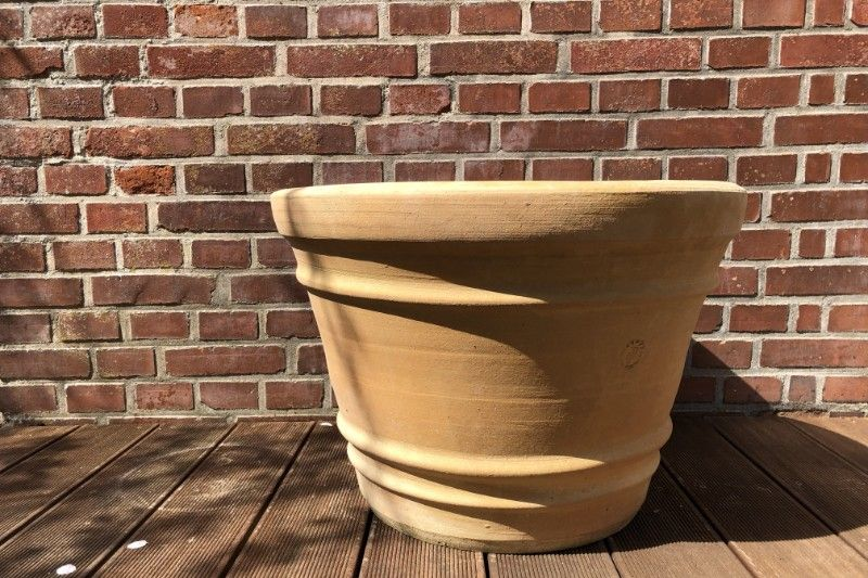 Brug Græske terracotta-krukker for et fedt look i haven
